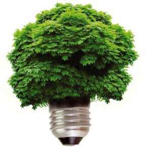 """36ste inzending P-NUTS Awards 2011:"""" De coöperatieve Zutphense Energie Transitie (ZET)"""""""