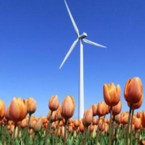 Prijsvergelijker: 'Groene stroom uit Nederlandse windmolens soms goedkoper dan grijze stroom' - Groene Courant